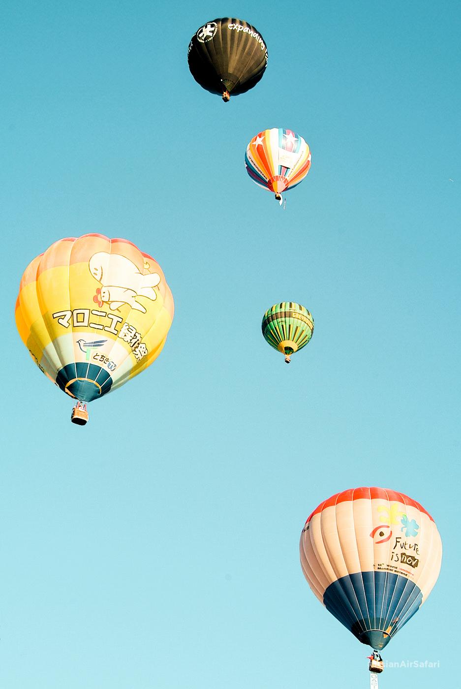 balloonslide (9 of 25)